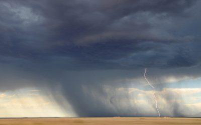 Surviving Storms